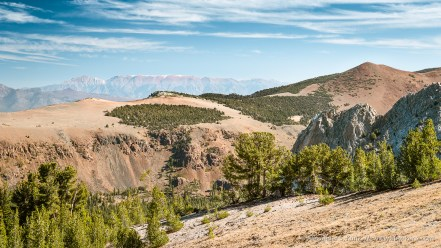White Mountains View -- Mammoth Crest, Mammoth Lakes, California, United States