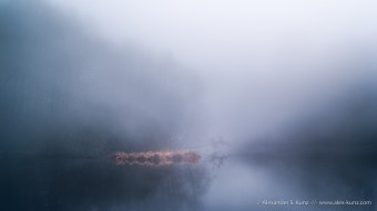 Fog and Pond, Huckinger See, Tarsdorf, Innviertel, Austria