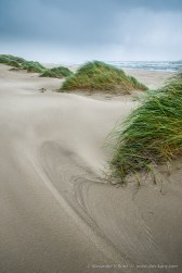 Coastal Dunes at South Jetty County Park, Florence, Oregon, United States