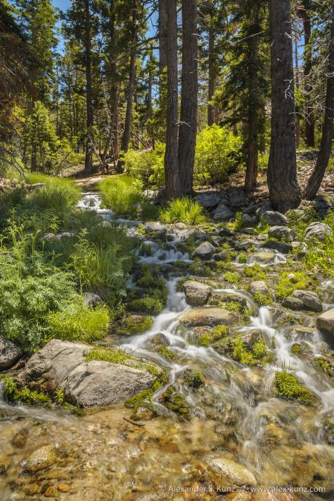 Creek Crossing -- San Gorgonio Wilderness, San Bernadino National Forest, California, USA