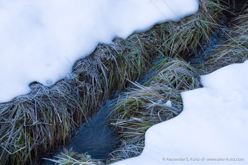Ditch at Frillensee, Inzell, Bavaria, Germany