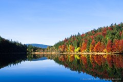 Frillensee in Autumn -- Frillensee, Inzell, Bavaria, Germany