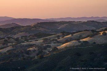 Evening along Adelaida Road, Paso Robles, California. April 2016.