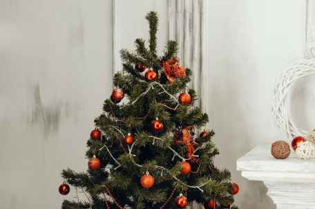 green christmas tree with orange bauble