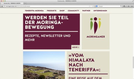 mroinga webview01
