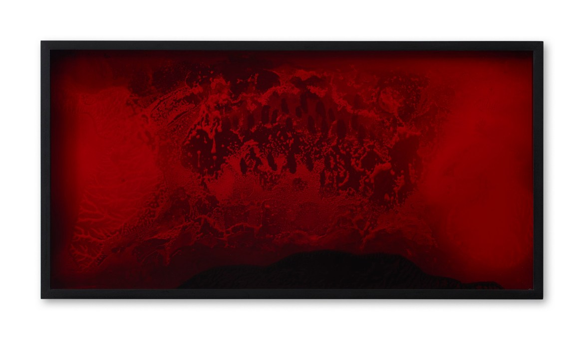 Bettina Scholz, Red (03)