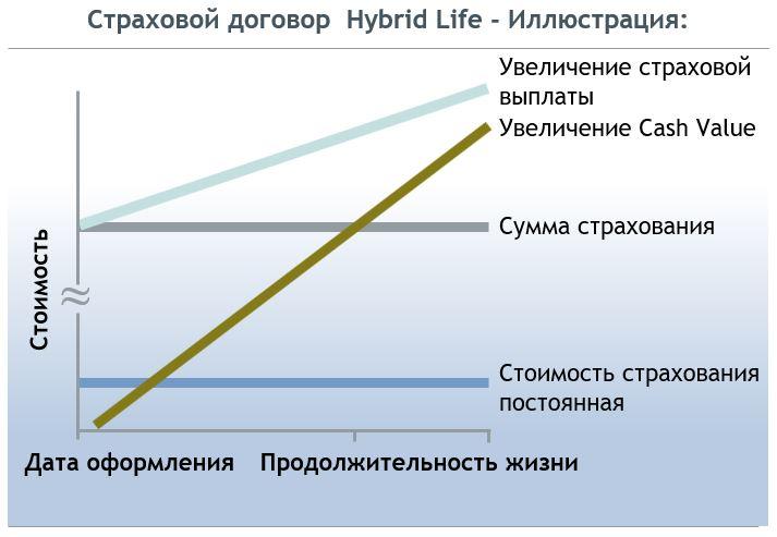 Страховой договор Hybrid Life