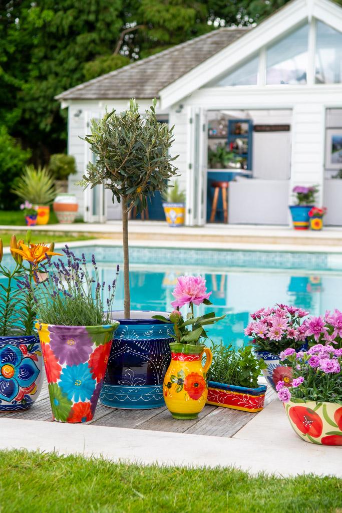 A commercial photo for a plant pot wholesaler