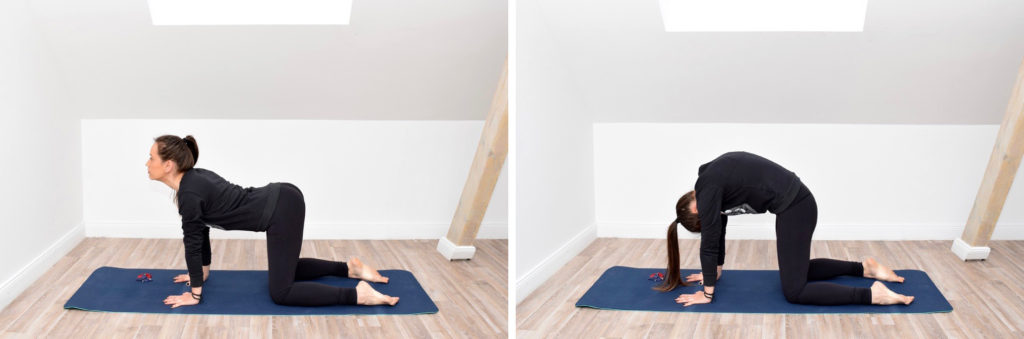 Yoga Marjariasana