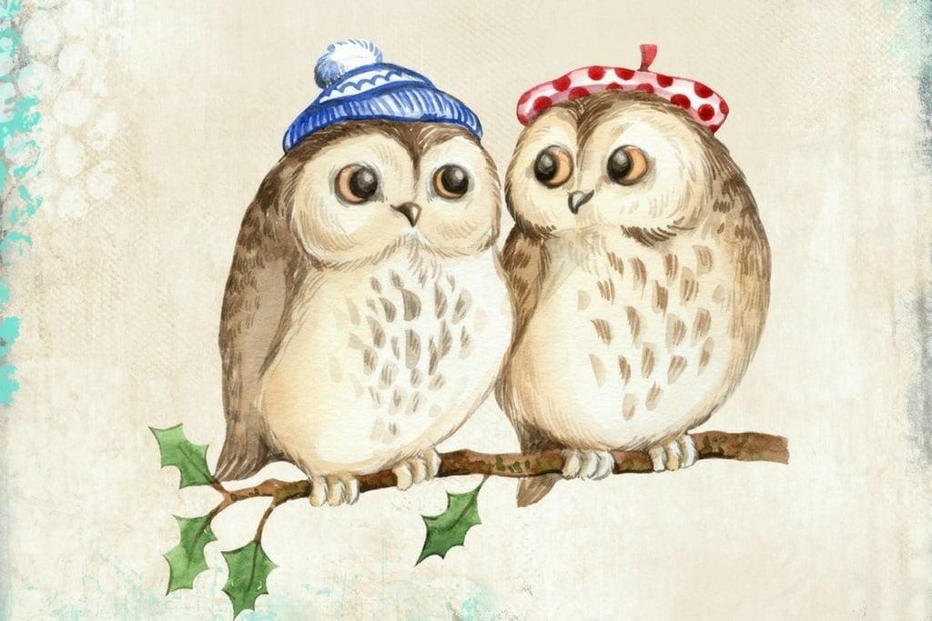 Cute Owl Couple