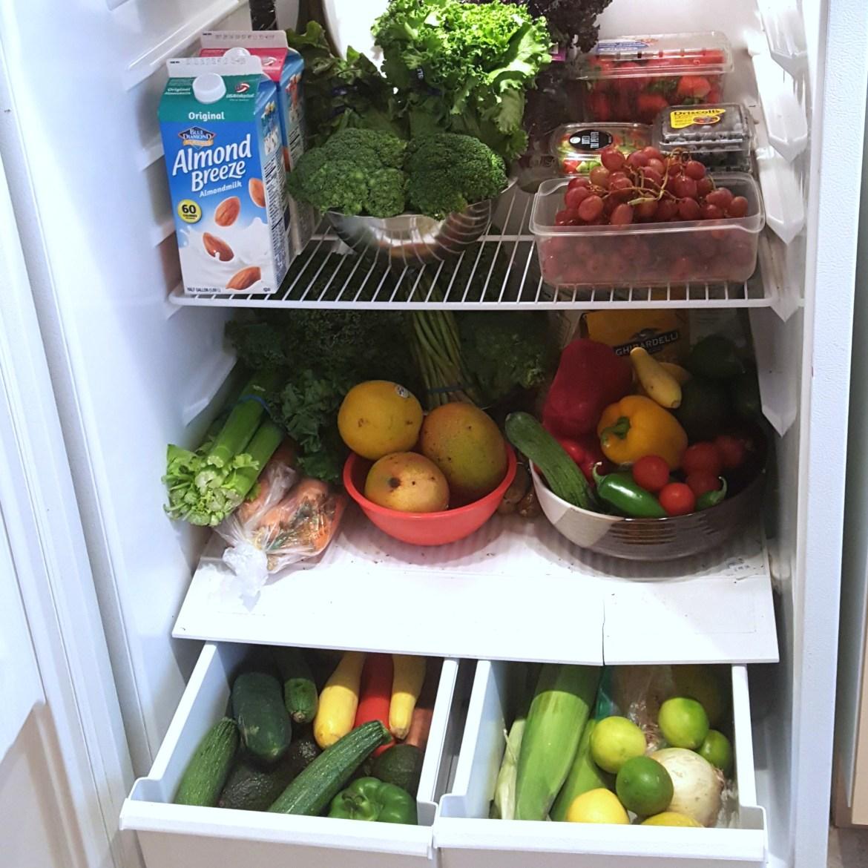 healthy refrigerator fithair