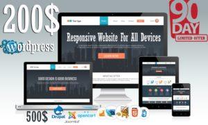 Website Design Offer