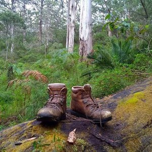 walking-boots-bush