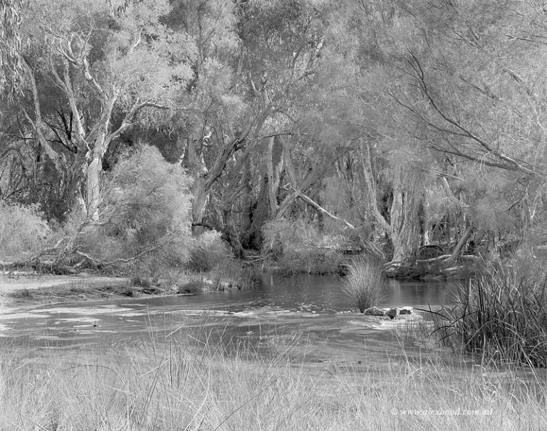 Bannister Creek Canning River Perth