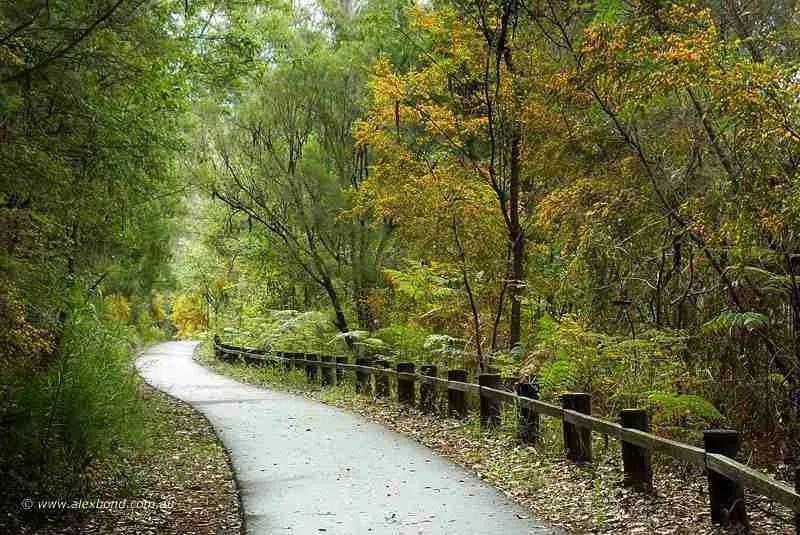 Sealed walk trails offer excellent access at Big Brook Dam