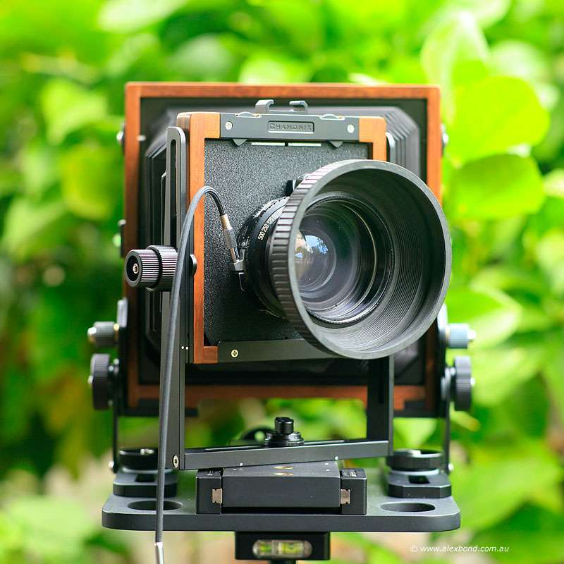 large-format camera movements front swing