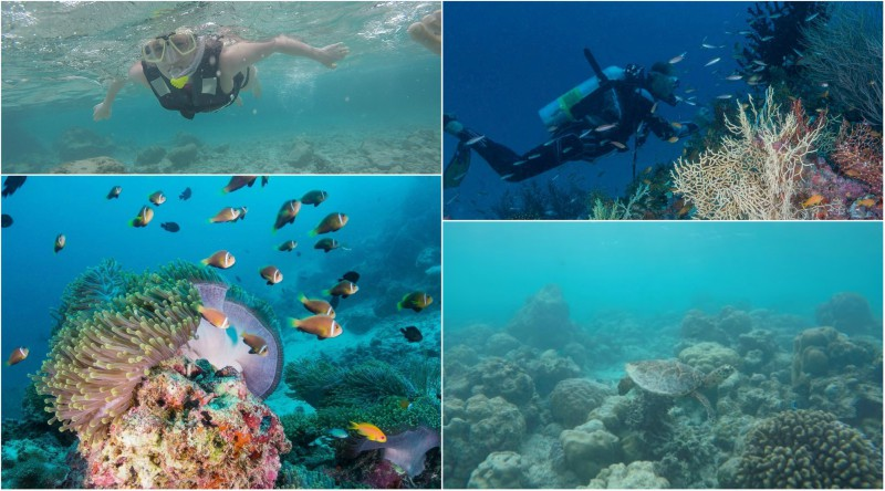 Diving and snorkeling at Milaidhoo Resort Maldives