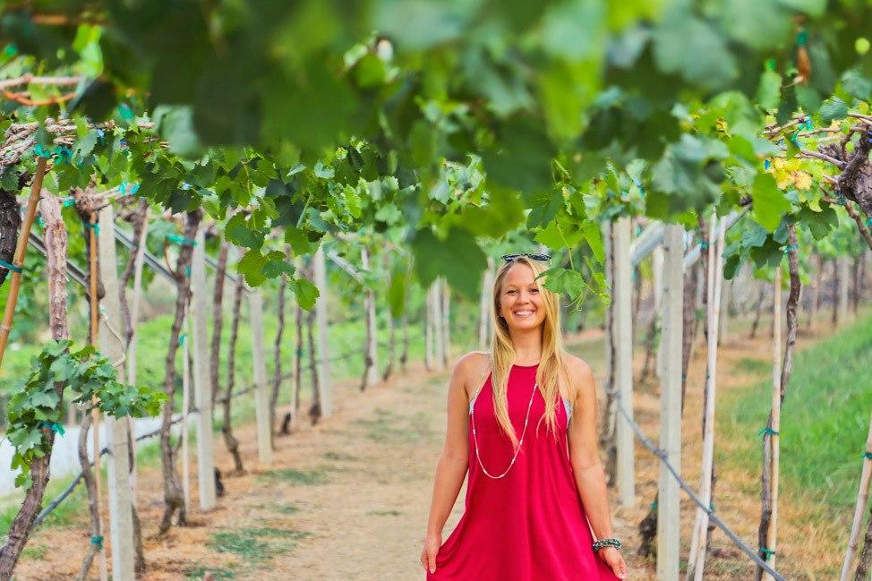 Hua Hin Hills Winery Vineyards