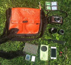 """In my camera bag"" 2015"