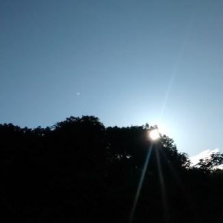 Guten Morgen - Sonnenschein