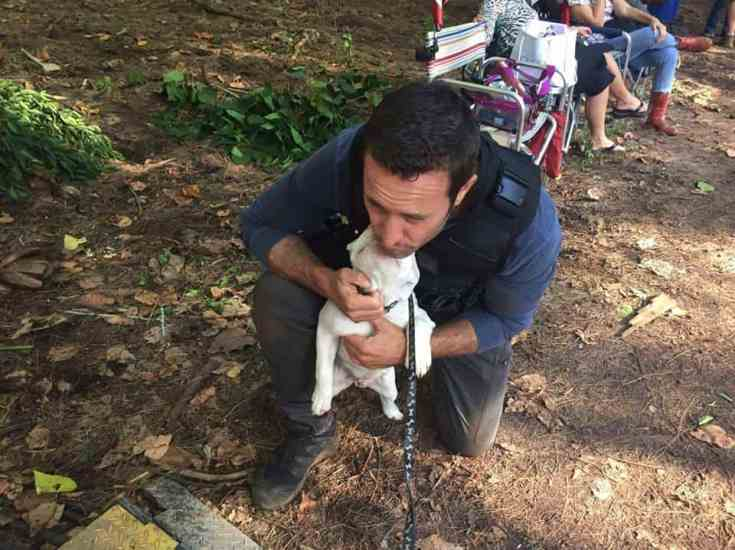 alex o'loughlin with puppy