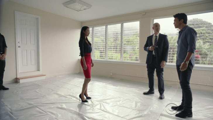 Hawaii Five 0 episode 8.19