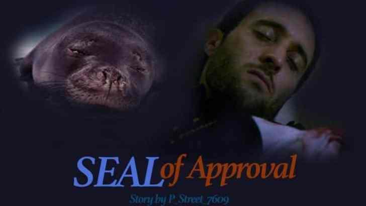 Hawaii Five 0 Fan Fiction -SEAL of Approval-Part 4