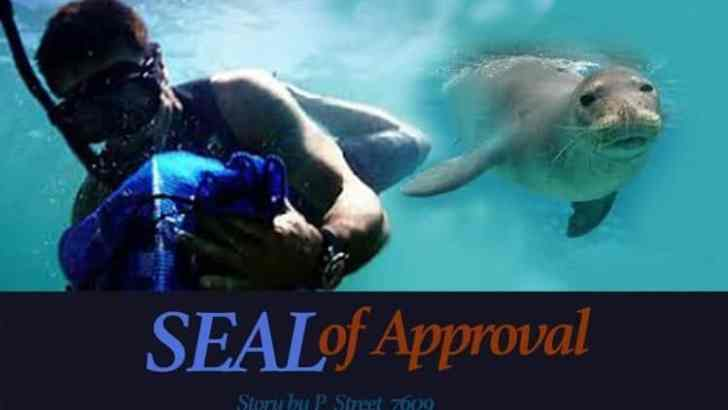 Hawaii Five 0 Fan Fiction -SEAL of Approval-Part 2