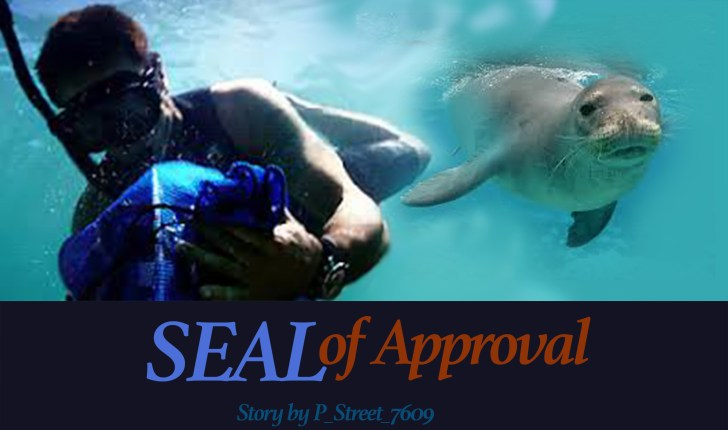 seal of approval fan fiction