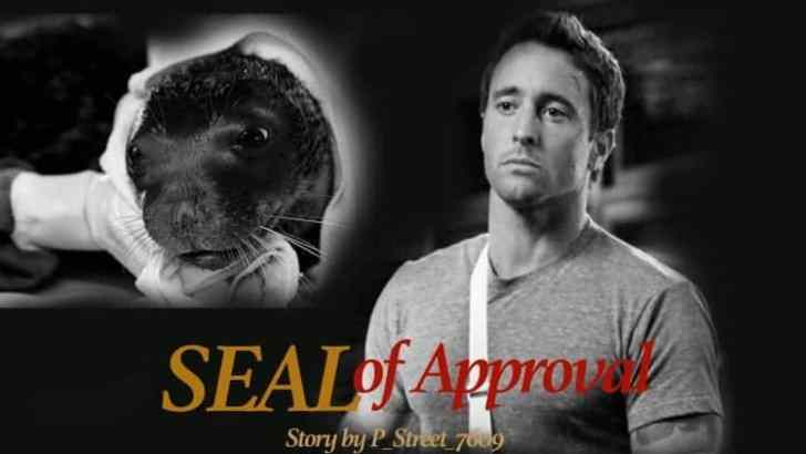 Hawaii Five 0 Fan Fiction -SEAL of Approval-Part 5
