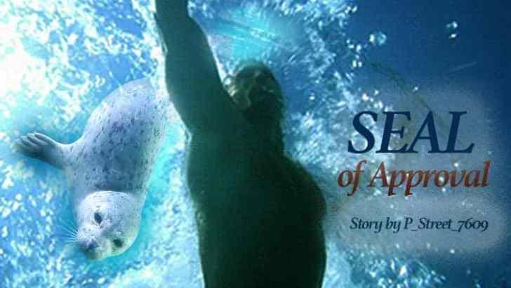 Hawaii Five 0 Fan Fiction -SEAL of Approval