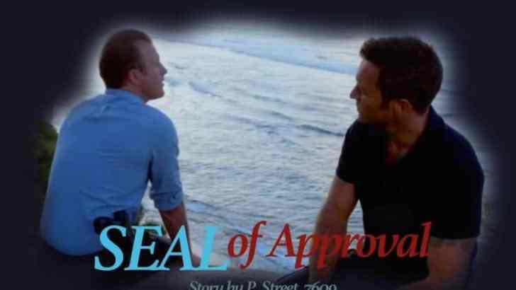 Hawaii Five 0 Fan Fiction -SEAL of Approval-Conclusion