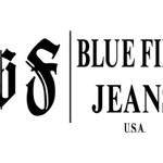 logo_bluefire_web