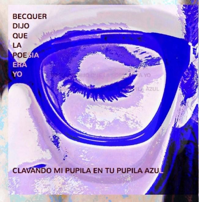 pupila cover