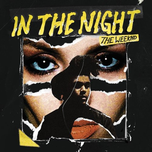 The Weeknd - In The Night