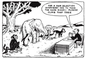 differentiationpicture