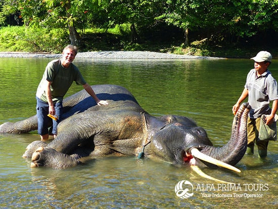 6 Days Sumatra Nature Culture Alfa Prima Tours Travel