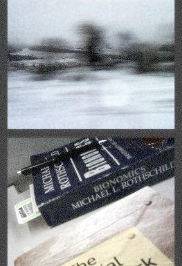 El invierno desde el tren