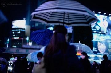 shibuya-rain_ALF7956