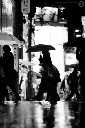 yokohama_rain_ALF_0504