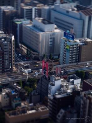 www-AG-tokyo-dinkytown_9335716