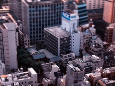 www-AG-tokyo-dinkytown_9335773