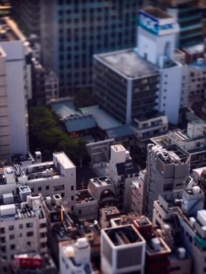 www-AG-tokyo-dinkytown_9335779