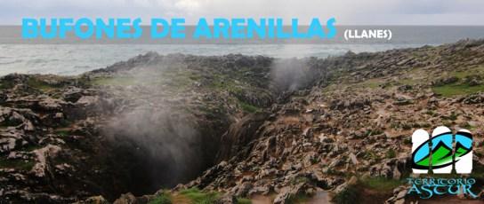 Territorio Astur: Bufones de Arenillas