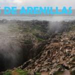 Bufones de Arenillas