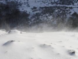 Reflexiones: ¿Nos alegramos de ver la nieve?