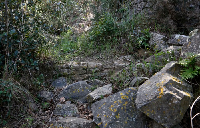 El camí de la Pedragosa.