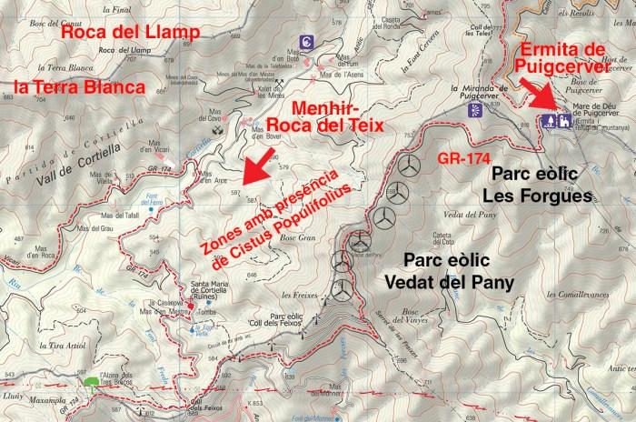 Menhir--Roca del Teix
