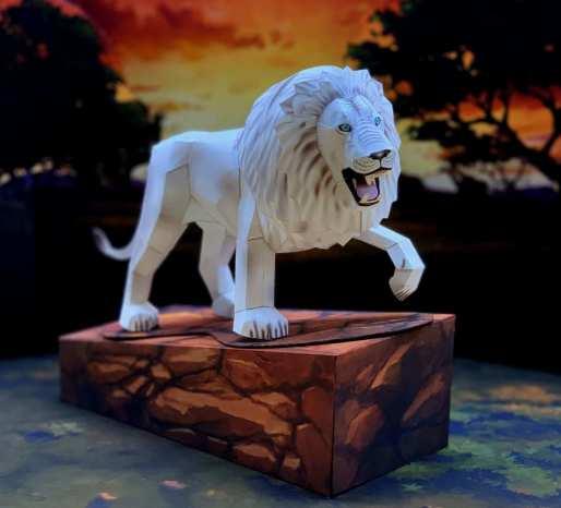 Leone bianco - Africa