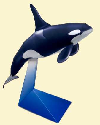 Orca - Marini